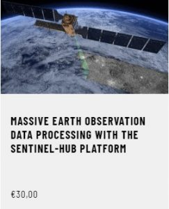 Massive Earth Observation Data Processing with the Sentinel-Hub Platform